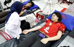 donor darah SGM