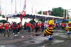 Senam pagi Karyawan Alfamart dan warga pada pengundian Gowes Nasional. Sabtu (16/11/2013)