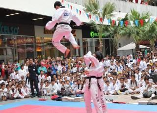 Taekwondo Indonesia di The Park Mall