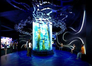 Ini Lho Sensasi Aquatrekking di Jakarta Aquarium